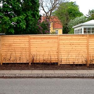 Enormt frøslev hegn | Velkommen hos Plankevaerk.dk MW79